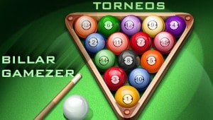 >>VI TORNEO BILLAR GAMEZER
