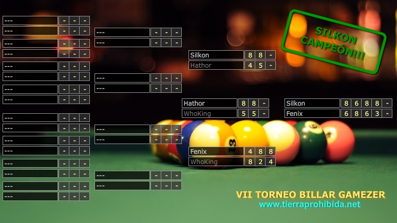 Silkon gana el VII Torneo Billar